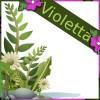 Violetta LM profile image