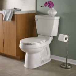 Best Flushing Toilet Reviews 2015