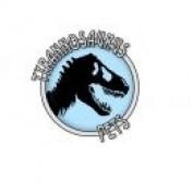 T Pets profile image