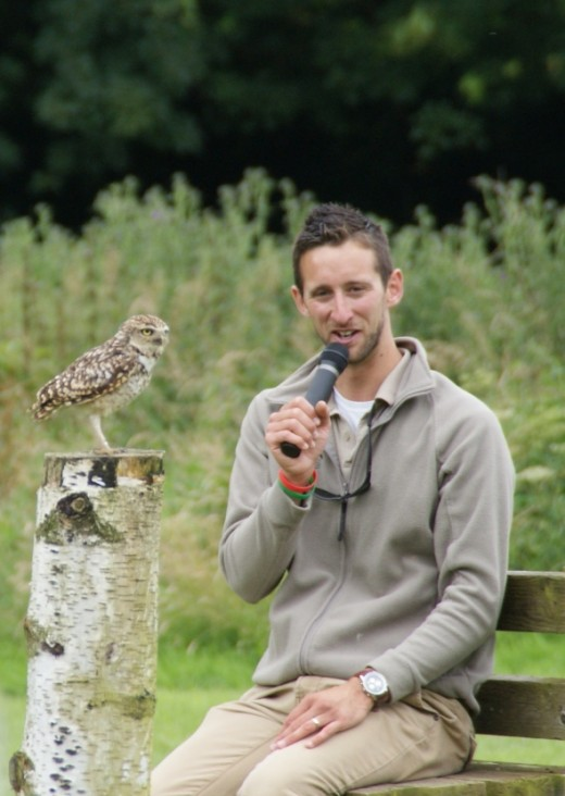 Major Lewis the Burrowing Owl takes centre stage while the event host carries on with the show