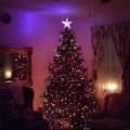 Christmas & Winter Decorating Ideas 2014