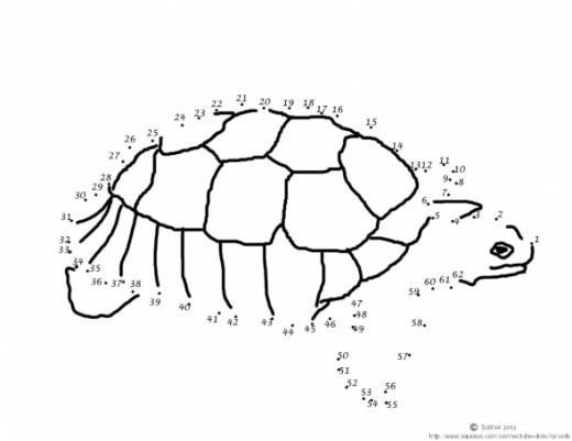 Similiar Turtle Dot To Dot Keywords