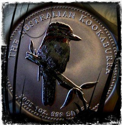 2005 Toned Silver Kookaburra