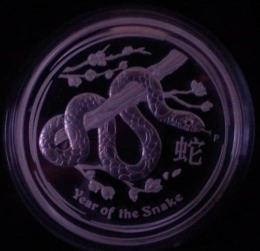 2013 Kilo Lunar Silver Snake Coin in Low Light