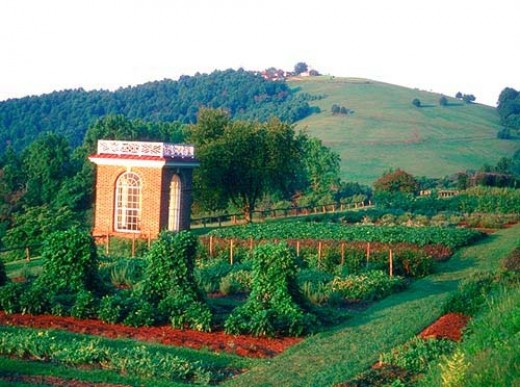 The Vegetable Terrace at Monticello