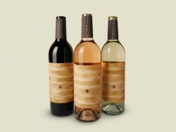 Wine Bottle Labels - Ben Schlitter Wine