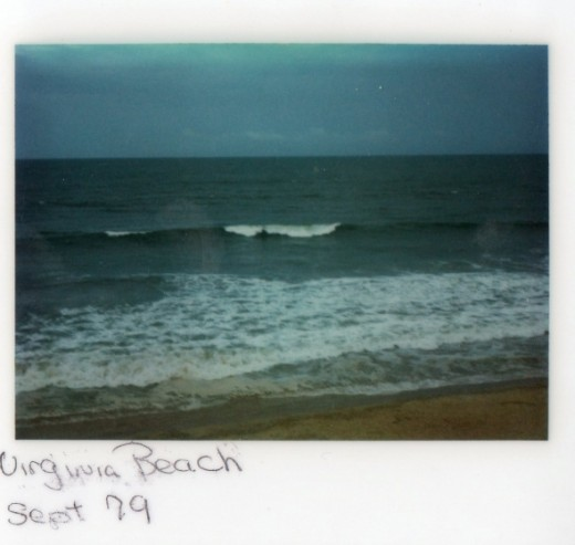 I love the beach! The sound of waves crashing, the fresh salty air, it's so beautiful!