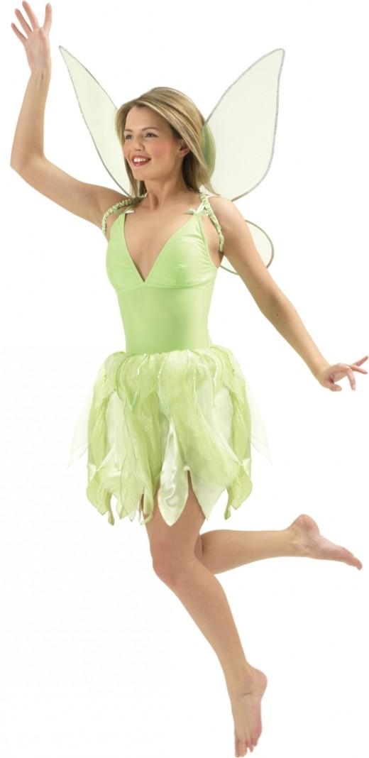 Neverland Fairy Costume