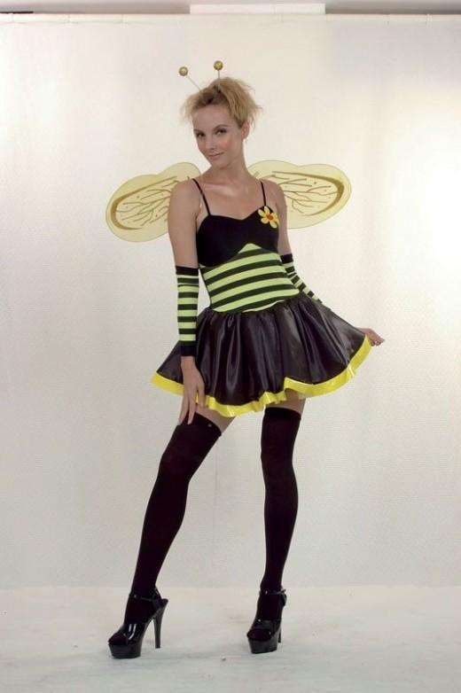 Ladies Honey Bee Costume