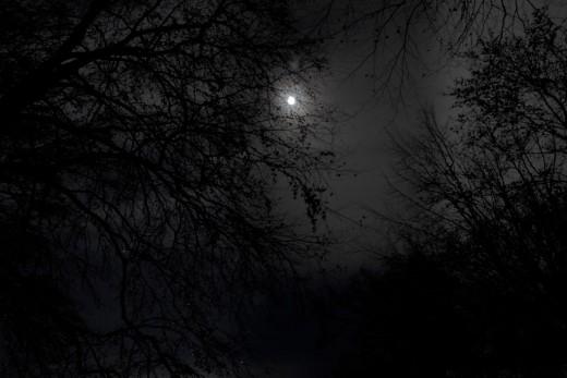 Photo Credit: glasseyes view, flickr, via CC