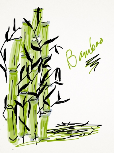 The Original Bamboo Painting