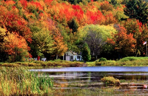 Colour and light combine to make this an unmistakable New England scene.The trees are complimented by the foreground water.