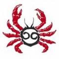 Crabby Cancer Girl