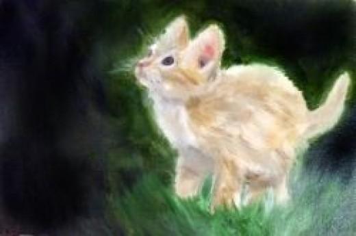 Cute Kitten OIl painting