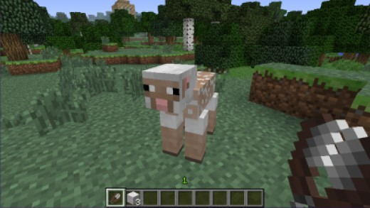 Sheep without Wool