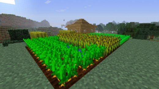 A Minecraft farm with carrots, potatoes, wheat, and melons.