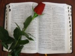 Bible Verses For A Happy Marriage