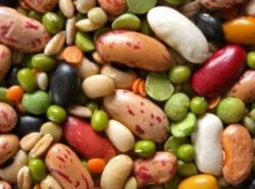quinoa beans vegetarian protein sources