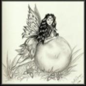 Shanna Redwind profile image