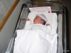 Baby Tanis, copyright 2006 Brooke Lorren