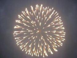 Peony Firework