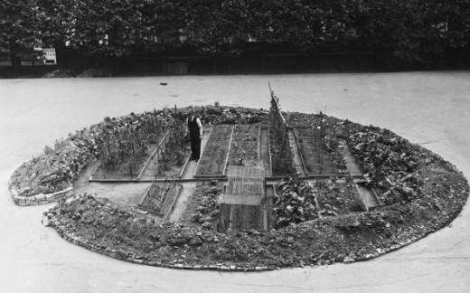 Bomb crater vegetable garden
