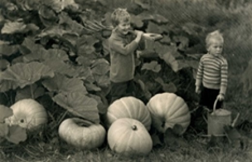 THE GOOD LIFE - 100 Years of Growing Your Own