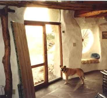 Living Room and Dog