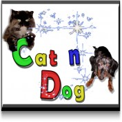 CatnDog profile image