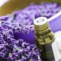Aromatherapy Lavender Oils