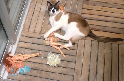 Smudge with dolls