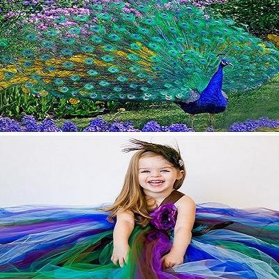 Peacock Themed Wedding - Flowergirl's Dress with Peacock used as a Color Palette