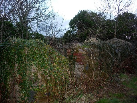 Ruined cottage, The old Preacher's House