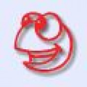 BeginnersGuitarL profile image