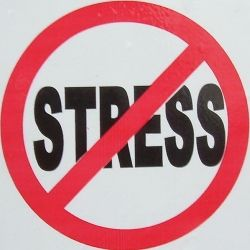 without stress