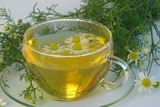 Chamomile Tea Benefits