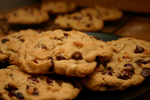vegan chocolate chip cookies with coconut and cranberries