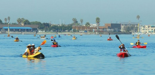 A herd of kayakers!