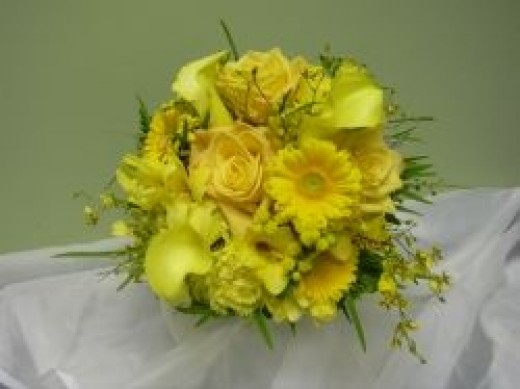 This yellow, monochromatic (all one color) bouquet features Gerbera daisies, roses, calla lilies and Oncidium orchids.