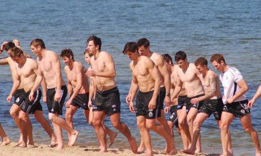 And this is what the fuss is about - the AFL's Collingwood football team take a post-training dip in the sea