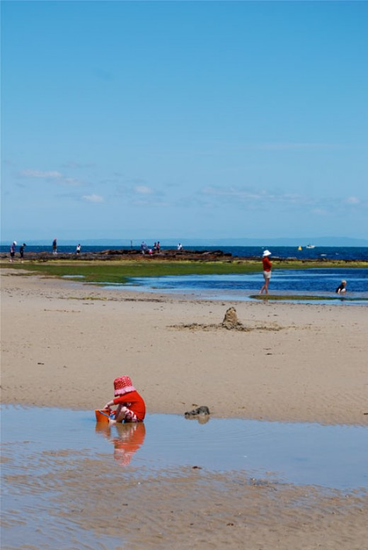 The rockpools in summer offer a world of exploration