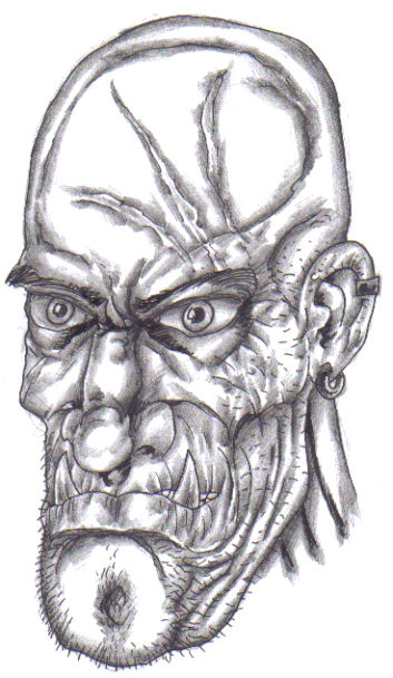 This is a possible trolls head that could fit on your trolls figure, but the only limit is your imagination!