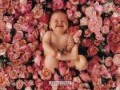 Anne Geddes - 1 Baby