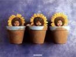 Anne Geddes - 3 Babies