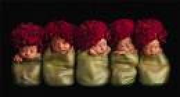 Anne Geddes - 5 Babies