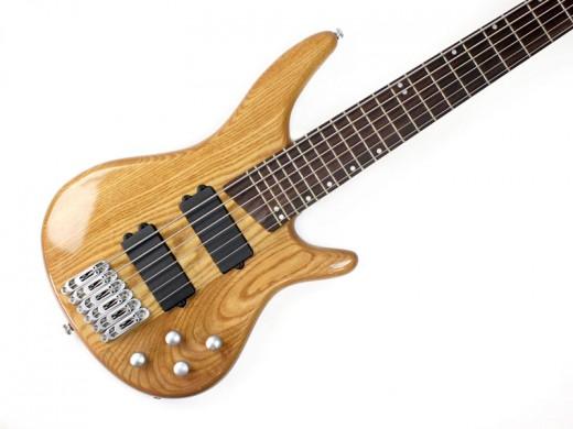 6 String Bass Guitar