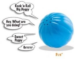 talking dog toy