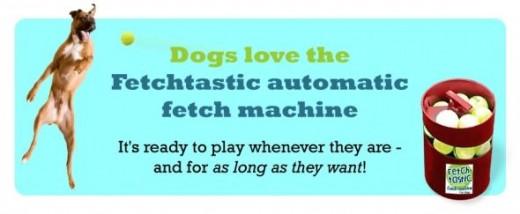 fetchtastic dog ball thrower