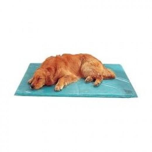 canine cooler dog bed