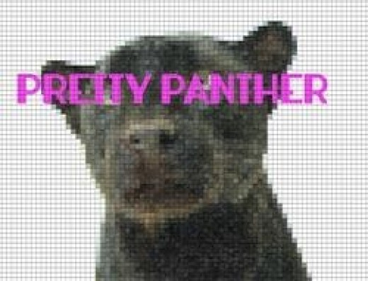 Pretty Panther